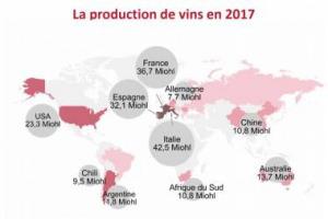 Giù la produzione, con 250 milioni di ettolitri di vino nel 2017 (-8,6% sul 2016), consumi stabili, a 243 milioni di ettolitri, ma scambi in crescita, per 30 miliardi di euro: ecco i dati Oiv