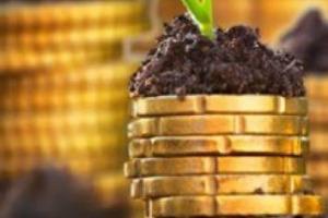 Nomisma: a 10 anni dalla crisi l'agroalimentare si conferma settore anticiclico ad alta redditività