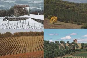 """Il gotha del vino mondiale, dalla Borgogna al Barolo, al Brunello di Montalcino, ma non solo, riunito nella Val d'Orcia patrimonio Unesco, per riflettere, in un """"simposio"""" di alto livello, su terroir: le """"Giornate Giulio Gambelli"""" di Podere Forte"""