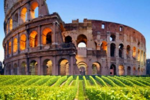 Italy is top for TripAdvisor. Rome and Florence the most popular cities for food and wine tours