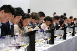 Debuts, verticals, novelties & Grand Tours: Vinitaly in the glass
