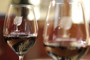 """La Barbera, anima """"pop"""" del bere quotidiano del Piemonte, in tour mondiale (con i vini del Monferrato), tra Svizzera, Stati Uniti, Bruxelles e Germania (in collaborazione con Vinum, Gambero Rosso, Slow Wine ed il """"Progetto Vino"""" di Collisioni)"""