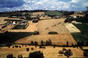 """La terra arabile più cara d'Europa? In Italia con la Liguria che si classifica come la prima Regione europea dai prezzi più alti (108.000 euro). Così uno studio Eurostat. Coldiretti: """"è il principale ostacolo all'ingresso dei giovani in agricoltura"""""""