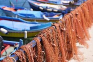 Semplificazione, tutela del reddito e competitività sono gli obiettivi principali della legge, approvata oggi alla Camera, che vuole riorganizzare e modernizzare il settore della pesca, valorizzando gli aspetti socio-culturali dell'ittiturismo