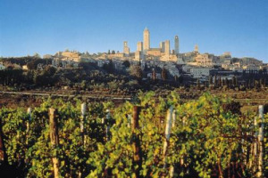 Le annate 2017 e le Riserva 2016 della Vernaccia, di scena a San Gimignano: le prime regalano vini piacevoli e immediati, le seconde sono ben centrate e interessanti. Nella città delle torri tra storia e numeri ...