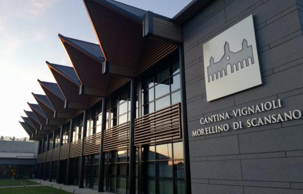 SOSTENIBILITA, VIGNAIOLI DEL MORELLINO DI SCANSANO, vino, Italia