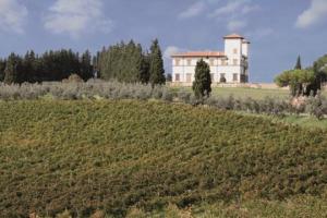 Territorio e denominazioni sono pilastri del vino italiano. Ma in alcuni casi, da soli, sono concetti che non bastano più, perchè c'è un mondo di appassionati che chiede di sapere da quale singolo pezzo di vigna arriva l'uva da dove nasce quel vino