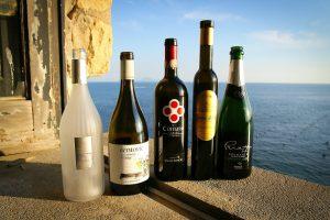 """Umani Ronchi, Feudi di San Gregorio, Masseria Campito e Ceste: il top del """"Napoli Wine Challenge"""""""