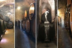 """Nella Montepulciano patria del Nobile, che già il Redi nel 1685 definiva """"d'ogni vino il re"""", alla scoperta delle cantine ancora operative nel centro storico: motore dell'enoturismo e trampolino verso la candidatura del paese a Patrimonio Unesco"""