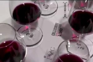 """Raccontare agli esperti del mondo un territorio con i suoi vini tipici, ma meno conosciuti: il """"Progetto Vino"""" di Collisioni ha puntato sui rossi del Friuli Venezia Giulia, celebre per i Bianchi. A WineNews il coordinatore del progetto Ian d'Agata"""