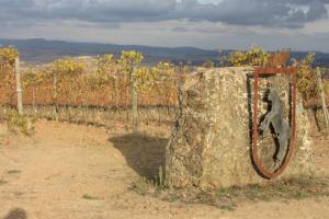Italia Paese di grandi vini. Non è una novità, ma dalla Top 100 Cellar Selections 2017 di Wine Enthusiast arriva una felice conferma: in cima alla classifica dei migliori vini da conservare in cantina, il Brunello di Montalcino 2012 di Conti Costanti