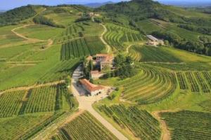 """Quando le assicurazioni investono in agricoltura: il caso Genagricola (760 ettari di vigneto su 14.000 complessivi) del Gruppo Generali. A WineNews l'ad Generali Italian Donnet: """"per noi è diversificazione di investimento"""""""