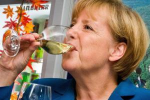 Il vino italiano leader sul mercato tedesco. Merito di qualità e varietà della produzione tricolore, ma anche della solidità dell'economia teutonica dove, però, si può fare ancora meglio