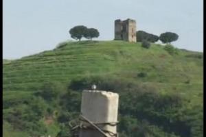Il Frascati è un vino antichissimo, che affonda le proprie radici nell'Antica Roma, Papa Farnese III lo preferiva addirittura ai vini francesi. Ma la reputazione del re dei vini dei Castelli Romani, oggi, è decisamente offuscata