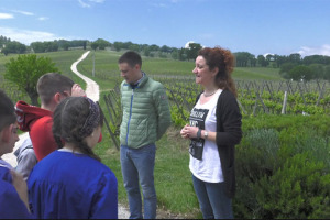 """A Montefalco, tra i vigneti di Sagrantino, i bambini delle scuole imparano l'importanza della tutela del loro territorio, della vite e del lavoro in vigna, e le regole della sana alimentazione. Con il """"Laboratorio Winenews per l'Educazione al Gusto"""""""