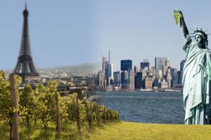 Il vino, ormai, si produce in tutto il mondo. Anche dentro alle grandi città. Tra le curiosità scovate da Wine News, a Vinexpo, anche quelle del primo progetto vinicolo professionale a Parigi, e la viticoltura di New York City e dintorni