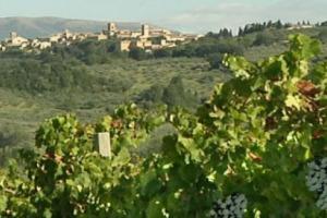 Il turismo, i territori, il vino: ricchezze fondamentali per l'Italia, ma che devono essere valorizzate di più e meglio. Con una programmazione turistica ed economica all'altezza, e con un sistema di offerta integrata, che oggi ancora non c'è