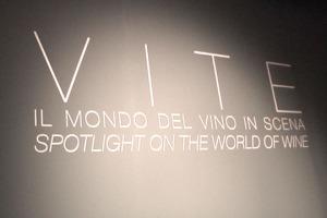 """Il vino è soprattutto gusto e olfatto. Ma può essere anche un racconto per immagine, tra territorio, storie di vita quotidiana, tradizione e modernità. Il caso della mostra fotografica """"Vite. Il mondo del vino in scena"""", firmata Zenato"""