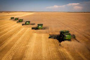 Nella guerra dei dazi tra Cina e Usa, l'agricoltura europea tra possibilità e pericoli