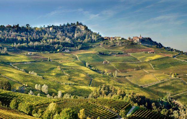 OCM VINO, PIEMONTE, PROMOZIONE, vino, Italia