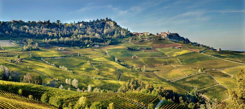 """The """"Vigneto Italia"""" is a boom. Dizzying prices for vineyards in the most important territories"""