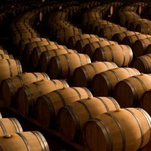Da Angelo Gaja ad Attilio Scienza, il vino italiano tra nuove economie e l'apporto della scienza