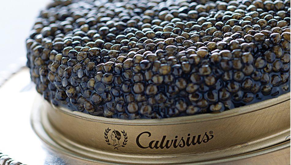 CALVISIUS, CAVIALE ITALIANO, La dispensa, Su i Vini di WineNews