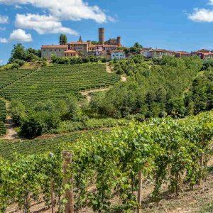 Città del Vino e dell'Olio: Agricoltura e Turismo per un solo Ministero? Grande opportunità