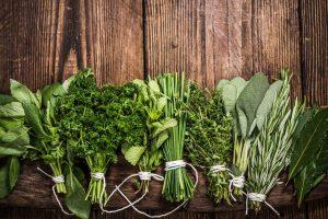 Non solo vino e piatti tipici, a tirare il settore del turismo arrivano le erbe aromatiche