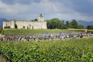 Il territorio delle celebri bollicine lombarde: ecco il vero vincitore della Franciacorta Stage