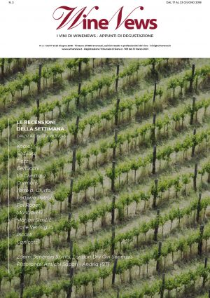 I Vini di WineNews - N. 2
