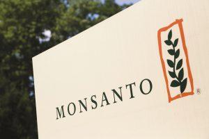Monsanto passa a Bayern, è rivoluzione per il mercato delle sementi e dei fertilizzanti agricoli