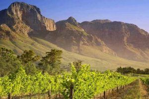 Mendoza, Napa Valley, Ningxia: il Nuovo Mondo enoico conquistato dalle bollicine