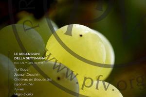 I Vini Di WineNews - N. 4