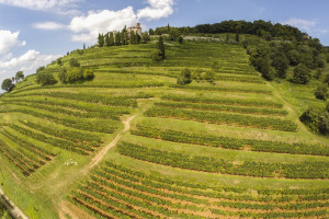 The Vittorio and Mariella Moretti Foundation is an act of love and gratitude for Franciacorta