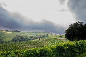 Il maltempo torna a colpire l'Astigiano: temporali, vento e grandine su vigneti e cantine