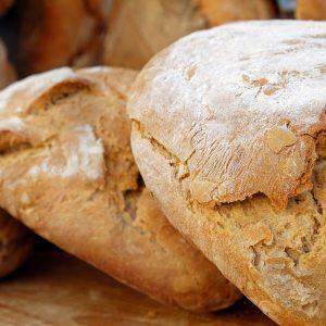 Il pane è nato prima dell'agricoltura, circa 14.000 anni fa, prodotto con cereali selvatici
