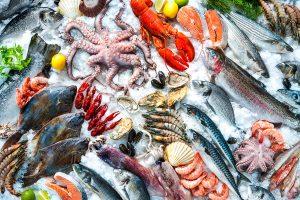 Stop al pesce fresco made in Italy: da oggi scatta il fermo pesca che farà il giro dei mari d'Italia