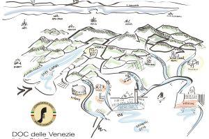 Pinot Grigio delle Venezie Doc, un successo: 1 milione di ettolitri rivendicati, e zero giacenze