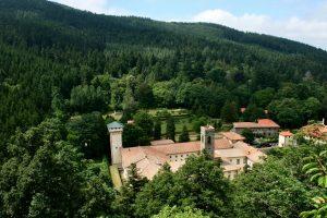 Tracciabilità dei prodotti, ricerca ed educazione ambientale: accordo Carabinieri-Coldiretti