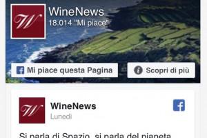 """WineNews su Facebook da """"maggiorenne"""": oltre 18.000 i Mi piace di followers eno-appassionati"""