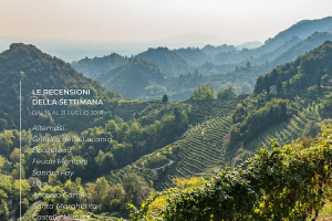 I Vini di WineNews - N. 6