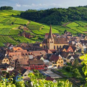 Francia, le prime previsioni parlano di una vendemmia 2018 abbondante, sui 46 milioni di ettolitri