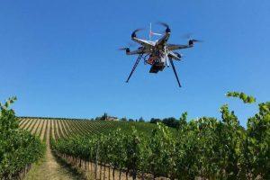 Sos Wine, il progetto di sostenibilità del professore di Enologia e Innovazione Fabio Mencarelli
