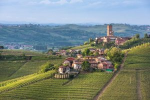 Dal Barolo alla Freisa, viaggio tra i vini del Piemonte tra nobiltà e quotidianità nel bicchiere