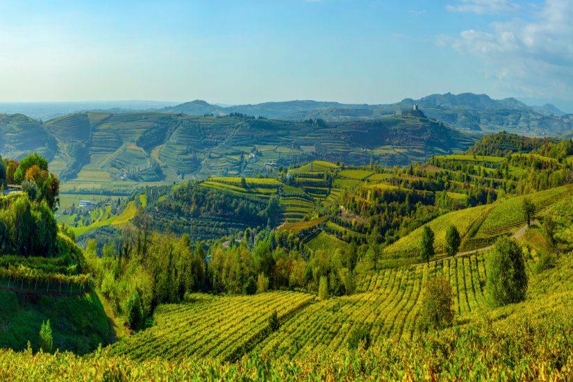 SOAVE, Su i Quaderni di WineNews