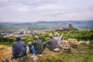 Immersi nel fascino dei territori del vino italiano in vendemmia, ecco gli eventi da non perdere