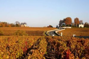 A Bordeaux le quotazioni dei vigneti ferme al 2012: mercato saturo, ma non per Margaux e Pomerol