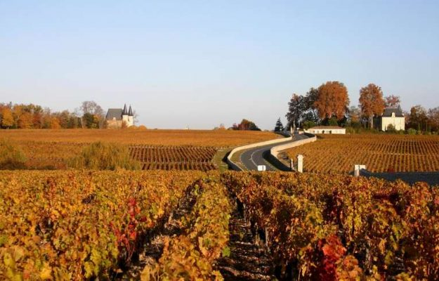 AMERICAN ASSOCIATIN OF WINE ECONOMISTS, Bordeaux, QUOTAZIONI, VIGNETI, Mondo