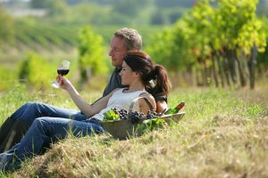 Estate, tempo (ancora) di vacanze. Meglio se tra i filari: i wine lover Usa votano la Vecchia Europa